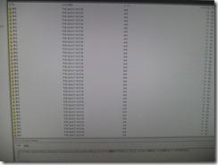 DSCF9341 (800x600)